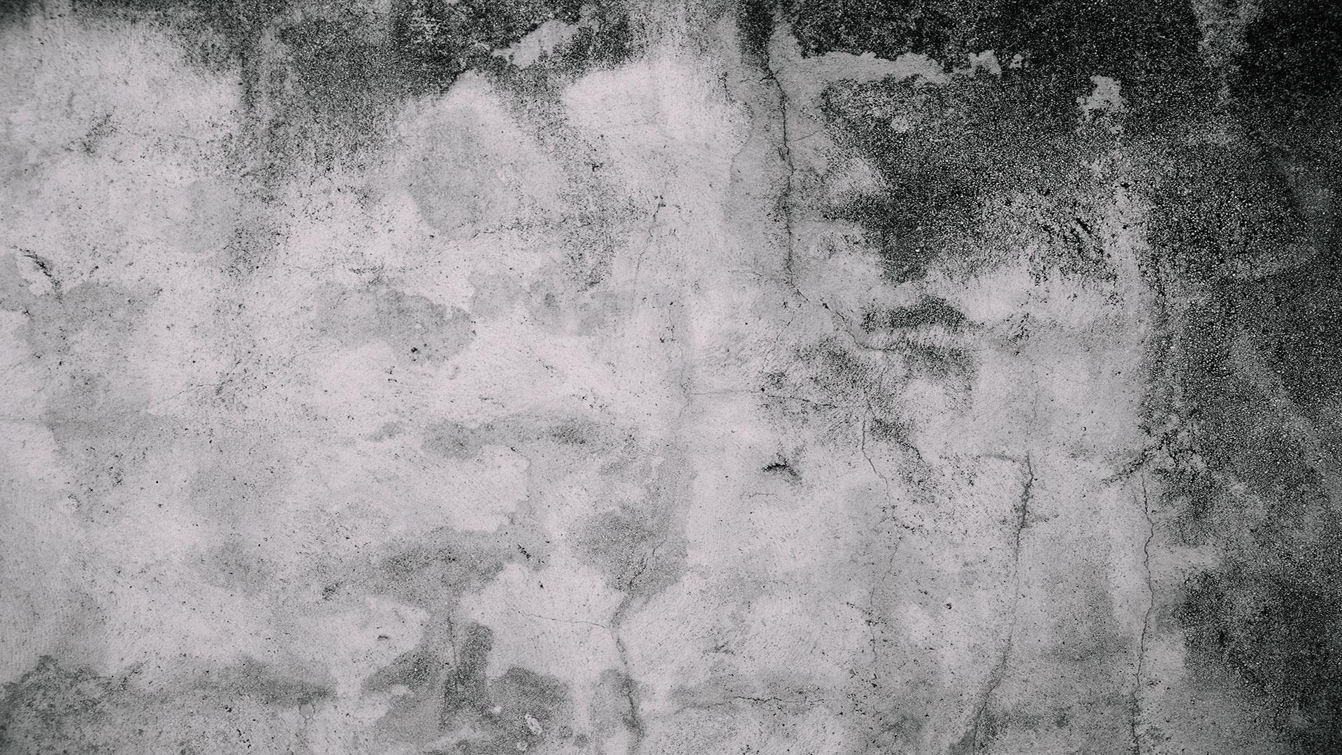 Mold becomes a problem inside a home or business when there's excessive humidity or moisture for an extended period of time.